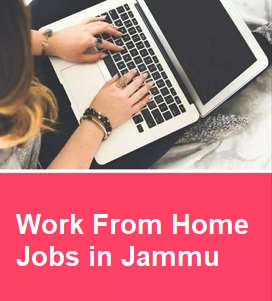 Work From Home Jobs in Jammu   Home Based Jobs in Jammu